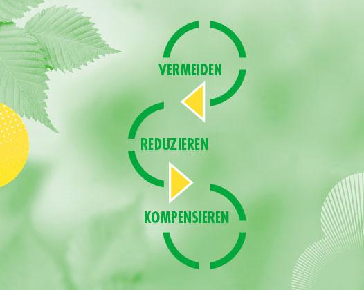 marabu-project-green-vermeiden-reduzieren-kompensieren.jpg